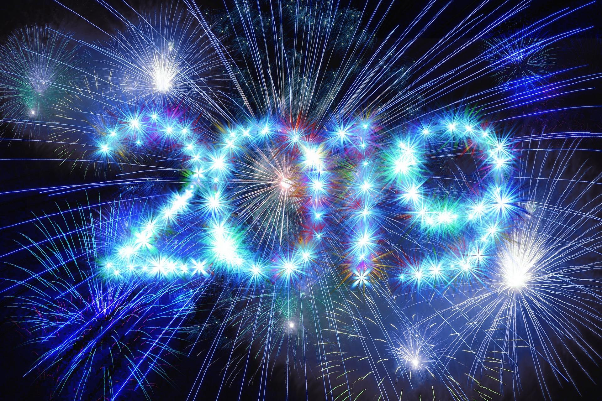 Bilan année 2019
